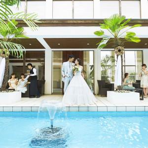 The Palm Garden(ザ・パームガーデン)   〈エルフラットグループ〉