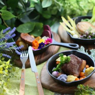 【平日限定】リゾート空間でおもてなし♪シェフ特製料理試食会
