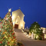 季節に合わせたコーディネートをララシャンスでは実施!クリスマスシーズンではおおきなクリスマスツリーが登場!