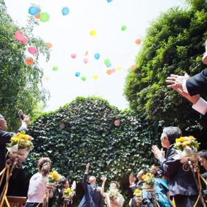 みんなでお祝いのバルーンリリース Restaurant ラファエルの写真(1120749)