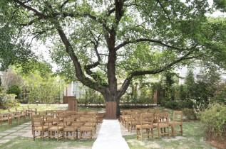 【挙式:桜の樹】|ラ・クラリエールの写真(854000)