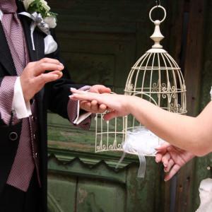 指輪の交換には鳥かごを準備していますお二人の思い出を素敵に演出|FINCH OF AMAZING DINERの写真(309339)