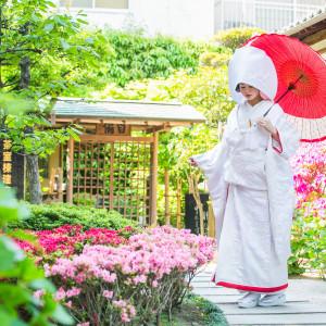 人気の土日フェア★憧れの和装試着!神社挙式の疑問解消&美容相談