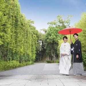【本格料亭での和婚が叶う】美食と四季を感じる庭園見学ツアー