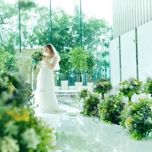 花嫁を最高に美しく魅せてくれる|シャルマンシーナ 東京(CHARMANT SCENA TOKYO)の写真(3298420)
