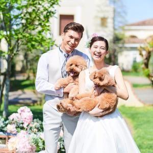 【ペットも一緒に結婚式♪】ペット演出提案×豪華無料試食