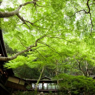 【森の結婚式】豊かな自然に囲まれた音羽山荘の相談会