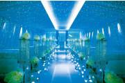 ・・★星空チャペル★・・GRANDARCHE WEDDING HILLS