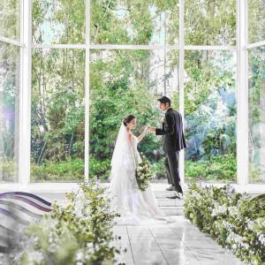 自然光を贅沢に取り込める大きな窓ガラスを使用した開放感のある会場 THE SEASON'Sの写真(4359450)