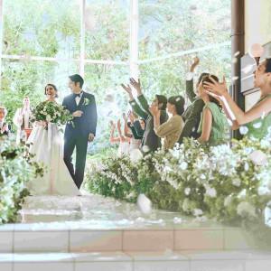 自然光を贅沢に取り込める大きな窓ガラスを使用した開放感のある会場 THE SEASON'Sの写真(4359641)