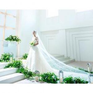 【特別開催】純白×自然光射し込む幻想的挙式体験フェア