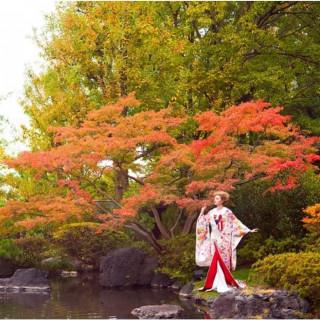 【和装が映える美景体験】日本庭園×和洋折衷の人気6品試食