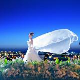 夜に映える天使の羽のようなベールをまとえばたちまちシンデレラに変身
