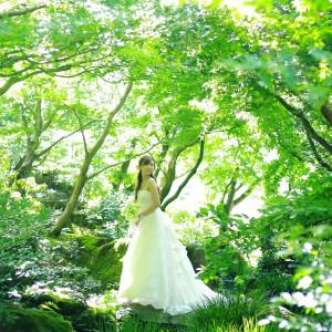由志園の豊かな自然に抱かれて心穏やかに過ごす『庭園挙式』