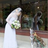 とっても綺麗な花嫁姿に大興奮❤