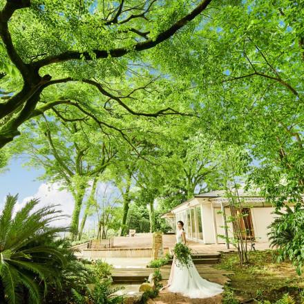 Maison de Forest(メゾン・ド・フォレスト)