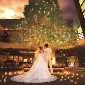 クスノキの前で永遠の愛を誓うセレモニーも可能です。|Restaurant en vue(アンヴュー)の写真(936317)