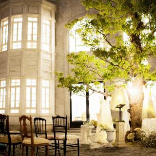 \ナイトウエディング/樹齢100年の木枝に灯る演出体験フェア