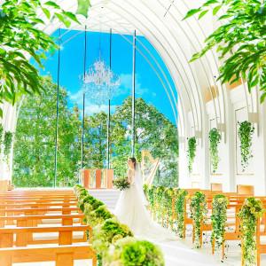 光溢れるチャペル・サンタムール。天井高10メートル、バージンロード22メートルの開放的なチャペルは愛知県最大級。緑と青空とシャンデリアが象徴的なチャペル。|ララシャンスOKAZAKI迎賓館の写真(4292123)