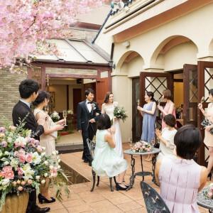 *夫婦桜満開*スペシャル3Days【限定特典×桜メニュー試食】