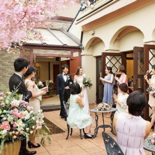 *夫婦桜満開*3/28-29限定【限定特典×春メニュー試食】