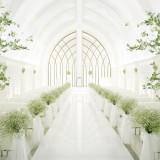 非日常的な純白の空間で、光に満ちたウエディングを。