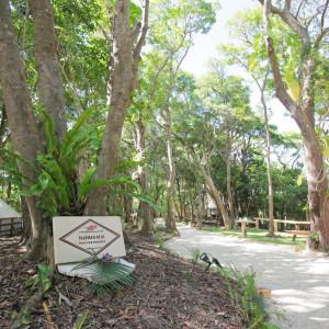 ココロとカラダを癒してくれる極上空間♪|ナンマムイ ビーチハウスウェディングの写真(2448373)