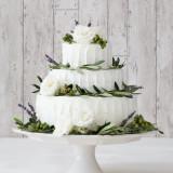 Special Cake フレッシュグリーン
