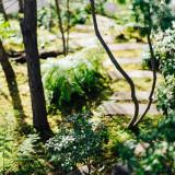 季節ごとに変わるIWAIの森。春には花を咲かせます。