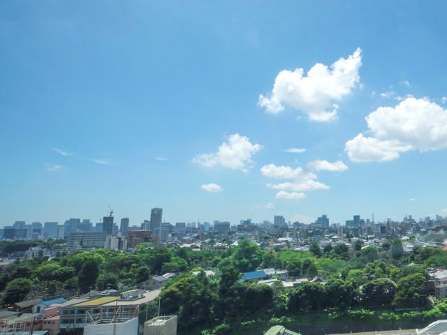 眼下に広がる東京の景色
