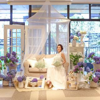 【4月〜6月結婚式にオススメ】さくらの樹特典♪×豪華試食付き