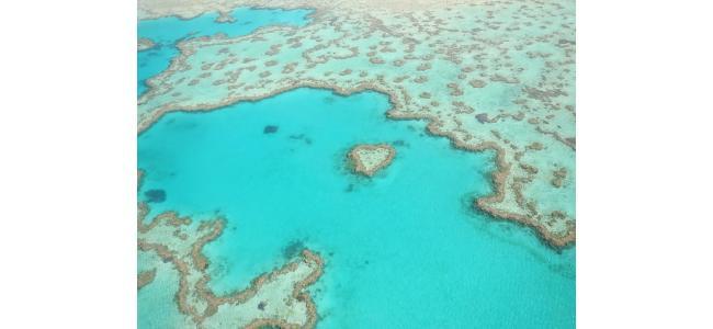 神秘的すぎ♡オーストラリアならではの世界遺産ウエディングってどんなの?!