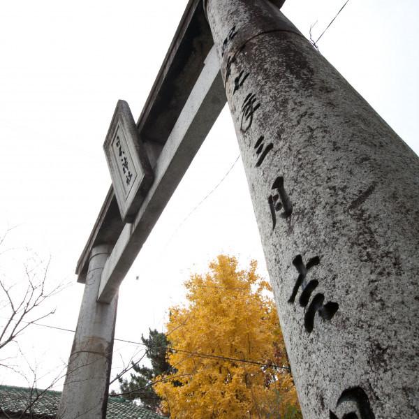 挙式した神社の鳥居