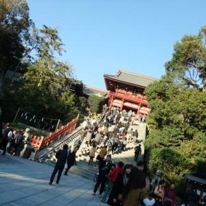 境内|362818さんの鶴岡八幡宮(チアーズブライダルプロデュース)の写真(75671)