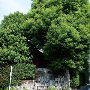 大きな木と、独特なオブジェが目印|364342さんの仏蘭西舎すいぎょくの写真(234434)