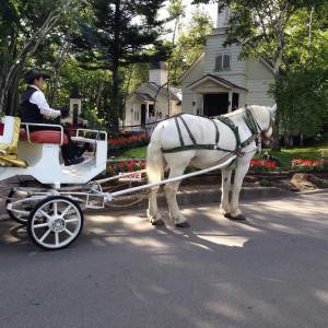 かわいい馬 396639さんの軽井沢白樺高原教会/ホテルグリーンプラザ軽井沢の写真(217607)