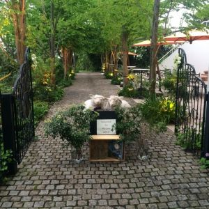 入口〜ガーデン間通路|412027さんのメゾン・ド・アニヴェルセルの写真(265696)