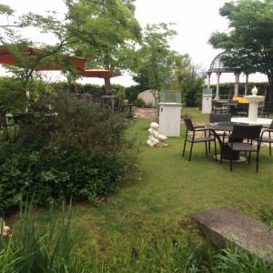 緑豊かなガーデン 412027さんのメゾン・ド・アニヴェルセルの写真(265702)