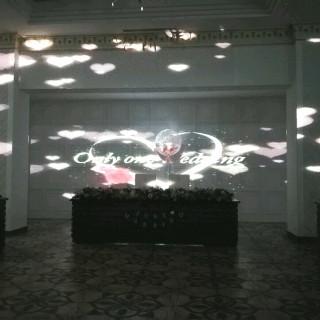 ラシュレディアコートタマヒメ/和歌山玉姫殿