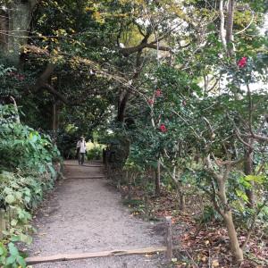 三渓園の施設|451390さんの三渓園 鶴翔閣(横浜市指定有形文化財)の写真(426631)