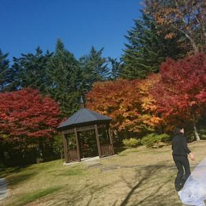 天気が良かったので外で乾杯を行いました|471081さんのホテルハーヴェスト旧軽井沢の写真(567202)