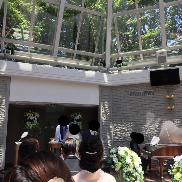 ガラス張りの天井は、本当すてきすぎます!!!!!!