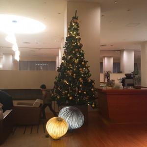 クリスマス時期にはツリーが|509809さんの札幌パークホテルの写真(721392)