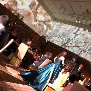 ドレスに合わせて映像を変更できます|510365さんのハイアット リージェンシー 京都の写真(859342)
