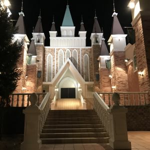 夜はライトアップされて見え方が変わって夜も良いなと思いました|515135さんのモルトン迎賓館 仙台の写真(687214)