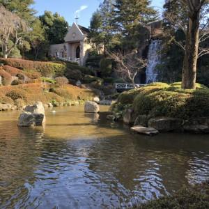 滝が流れていて四季を感じられる中庭。|521363さんのロイヤルガーデンパレス 柏 日本閣の写真(710270)