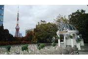 チャペルから東京タワー
