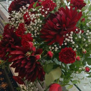深紅のお花でコーディネート|530245さんの長野玉姫殿の写真(769386)