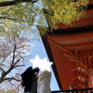 ここは挙式する人しか入らない写真スポットらしいです|532943さんの厳島神社の写真(961273)