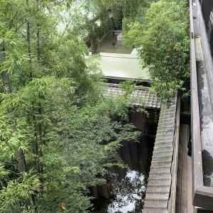 池には錦鯉が! 537312さんのTHE KAWABUN NAGOYA(ザ・カワブン・ナゴヤ)の写真(816060)